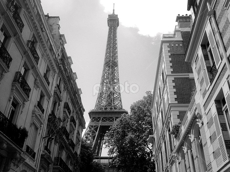 A Parisian Surprise by Christopher Charlton - Buildings & Architecture Statues & Monuments ( eiffel tower, paris, black and white, streets, travel )