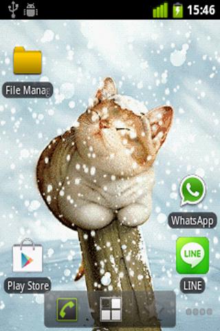 Snow Cat Live Wallpaper