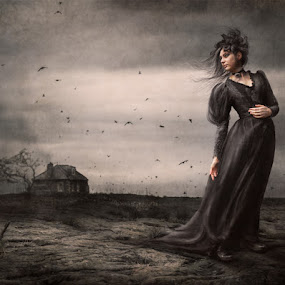 Call of the coven by KT Allen - Digital Art People ( creepy, wind, terns, witch, coven, sticks, house, farne islands )
