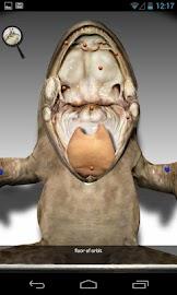 Froguts Frog Dissection Screenshot 4