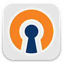 OpenVPN Settings logo