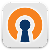 OpenVPN Settings