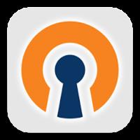 OpenVPN Settings 0.4.14