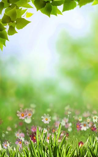 玩免費個人化APP|下載春天的草地動態壁紙 app不用錢|硬是要APP