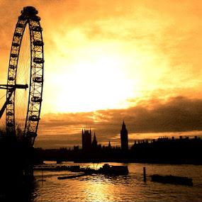 London at sunset by Shona McQuilken - City,  Street & Park  Vistas ( water, parliament, skyline, london eye, london, sunset, , silhouette )