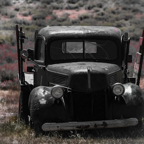 This Old Truck  by Dory Formiller - Uncategorized All Uncategorized ( old, vehicle, wood sides, rusty, antique, old truck,  )