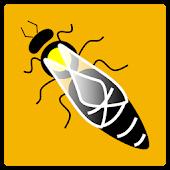 Bee Queen Rearing