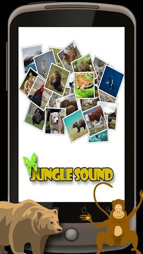 Animal Sounds For Kids v2014