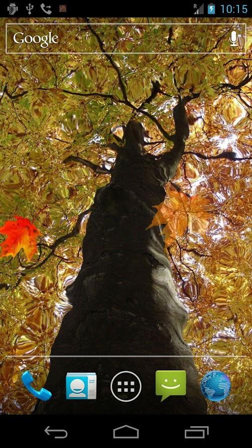 Autumn Maple Live Wallpaper- screenshot