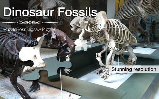 Dinosaur Fossil Jigsaws Demo