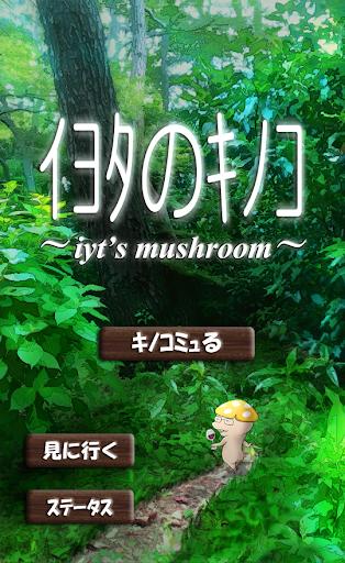イヨタのキノコ~iyt's mushroom~