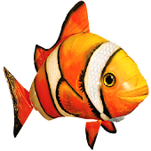 Аквариумные рыбки
