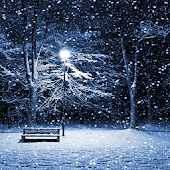 Winter Theme HD