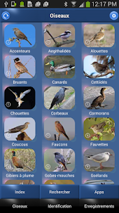Oiseau Id: Oiseaux de France- screenshot thumbnail