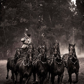 Attila and his horses by Christian Diboky - Black & White Animals ( dynamic, hungary, wild, horses, horse, black & white, rider, puszta, dust, artistic, power, force, black,  )