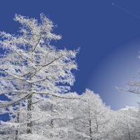 Winter Mountain 1.3