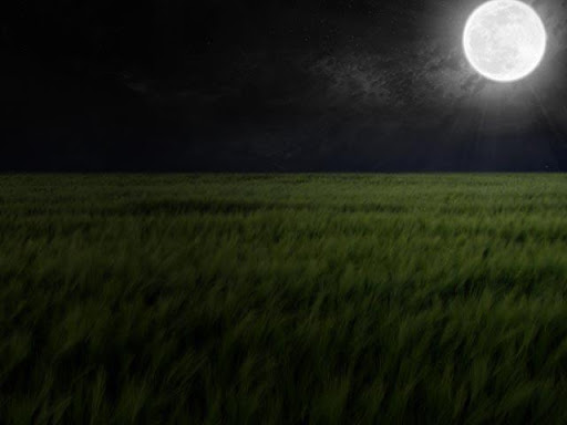 Moon Close Up Wallpapers