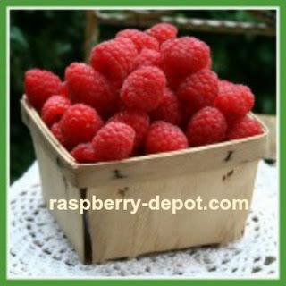 Easy Raspberry Compote.