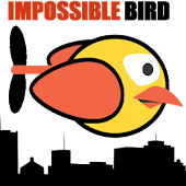 IMPOSSIBLE | FLYING BIRD