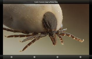 Screenshot of smart Microscope Lite