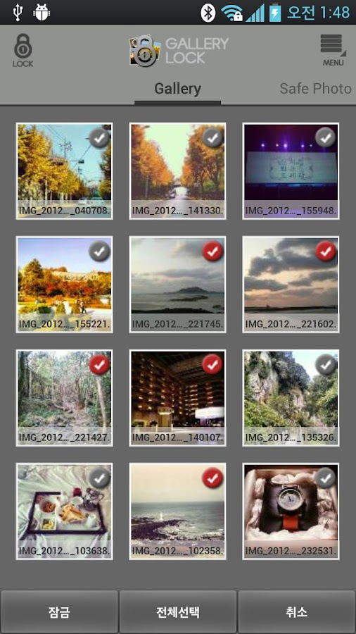 Safe Gallery Free (Media Lock)- screenshot