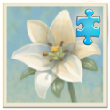 Inner Garden: Flower Garden 1 icon