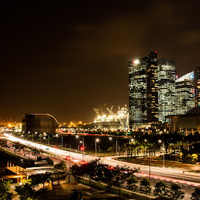 Singapore view by Lee Miko - City,  Street & Park  Street Scenes