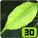 Refreshing Leaves 3D Wallpaper icon