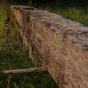 rail by Beckie Caughman - Artistic Objects Still Life ( field, missouri, rail, sunrise, decay )