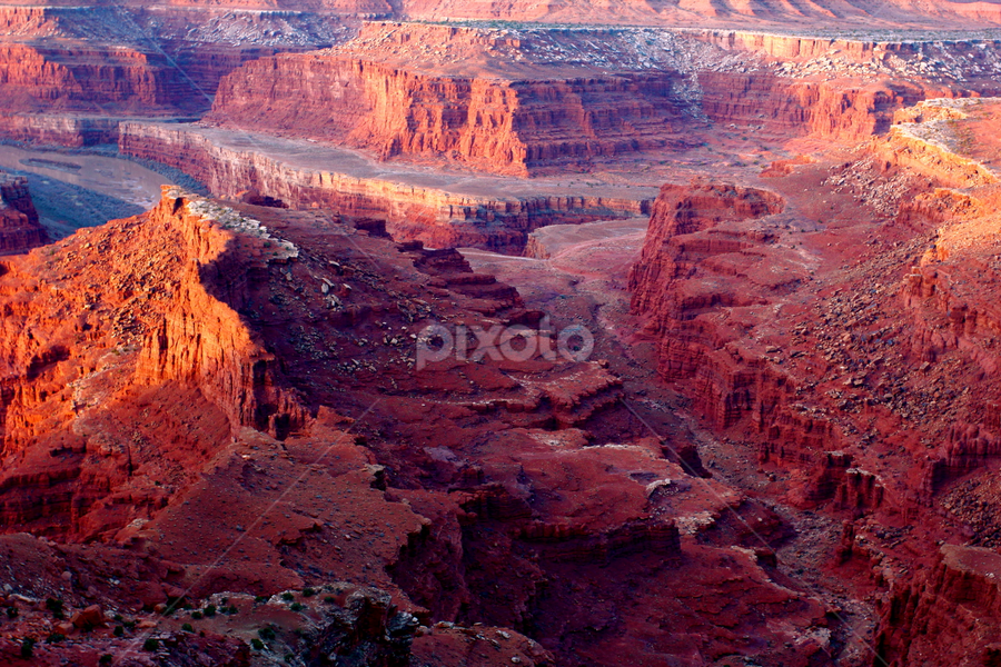 Dead Horse by Dennis Robertson - Landscapes Deserts (  )