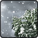 Winter Snowfall Free Wallpaper icon