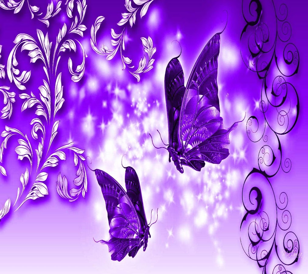 butterfly wallpapers share android apps on google play