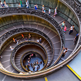 Magnificent spiral ramp, Vatican Museum by Manickavasagam Shanmugam Annamalai - Buildings & Architecture Other Interior ( museum, vatican meuseum rome italy,  )