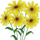 Plants Glossary icon