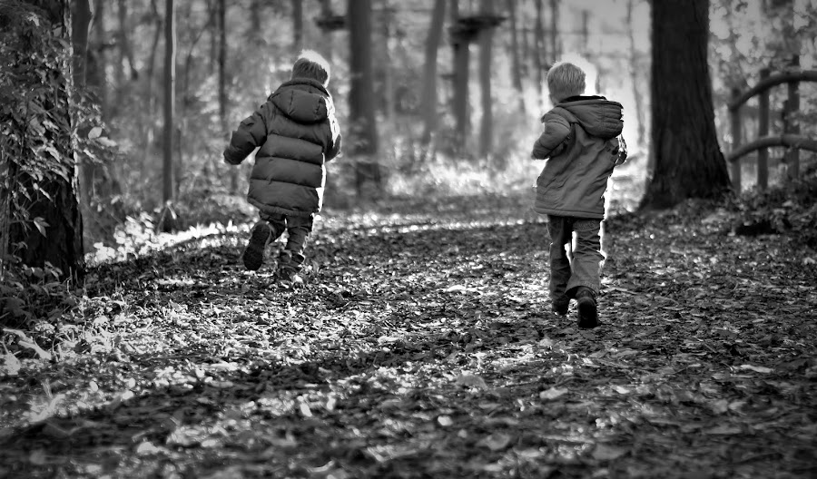 Boy racers by Melanie Pista - Babies & Children Children Candids ( black and white, racing, boys, forest, running )
