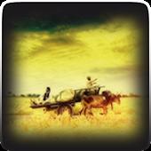 Punjabi SMS