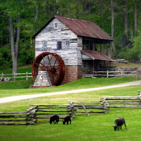 Museum of Appalachia by Connie Payne - Buildings & Architecture Public & Historical ( mills, buildings, barns, historic,  )