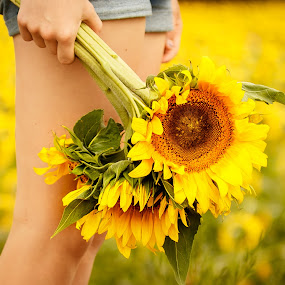 The Girl with the flowers by Olga Gerik - Flowers Flower Gardens ( girl, sunflowers, flowers,  )