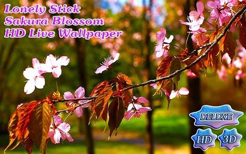 Lonely Stick Sakura Blossom HD