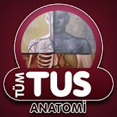 Tüm TUS Soruları Anatomi