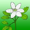 Aktar logo