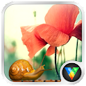 Fisheye  Flowers LWP icon