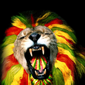 Reggae HD Wallpapers