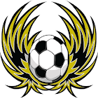 Wellington Phoenix Fan icon