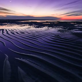 Sand Wave Sunset Landscape by Matthew Robertson - Landscapes Beaches ( sand, sunset, long exposure, night, ocean, sunrise, beach, landscape, cape cod )