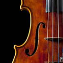 Violin Tuner 바이올린 튜너 icon
