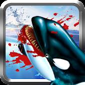 Killer Whale Simulator 3D