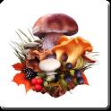 The Mushroom Navigator (FULL) icon