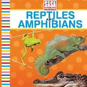 Board PS Reptiles&Amphibians