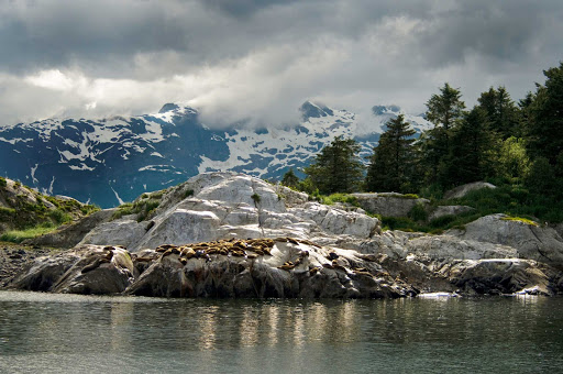 Glacier-Bay-Marble-Islands - Marble Islands, Glacier Bay National Park, Alaska.